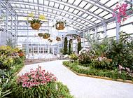 Seven flower parks